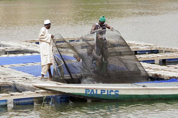 Senegal UN Photo
